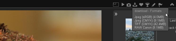 http://piwigo.org/screenshots/piwigo-2.8-multiple-format.png